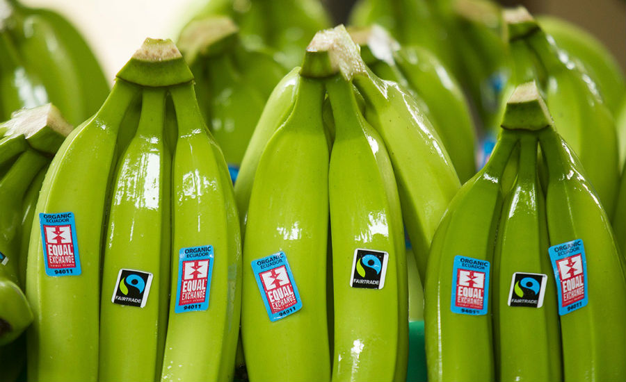 Fairtrade label bananas
