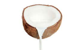 Coconut_stock