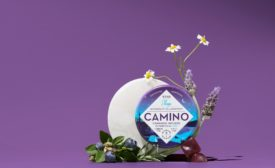 Camino Midnight Blueberry gummies