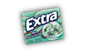 Extra Mint Chocolate Chip 900.jpg